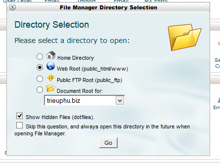 Tại mục Files, vào File Manager để quản lý file, up website